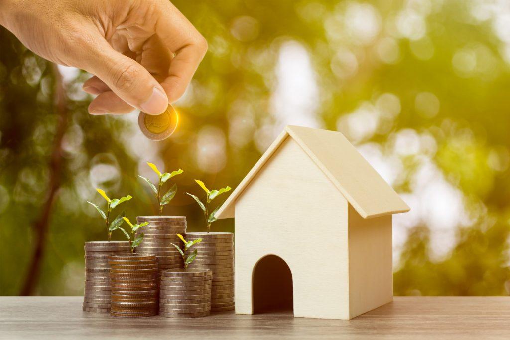 Investiție și parte financiară