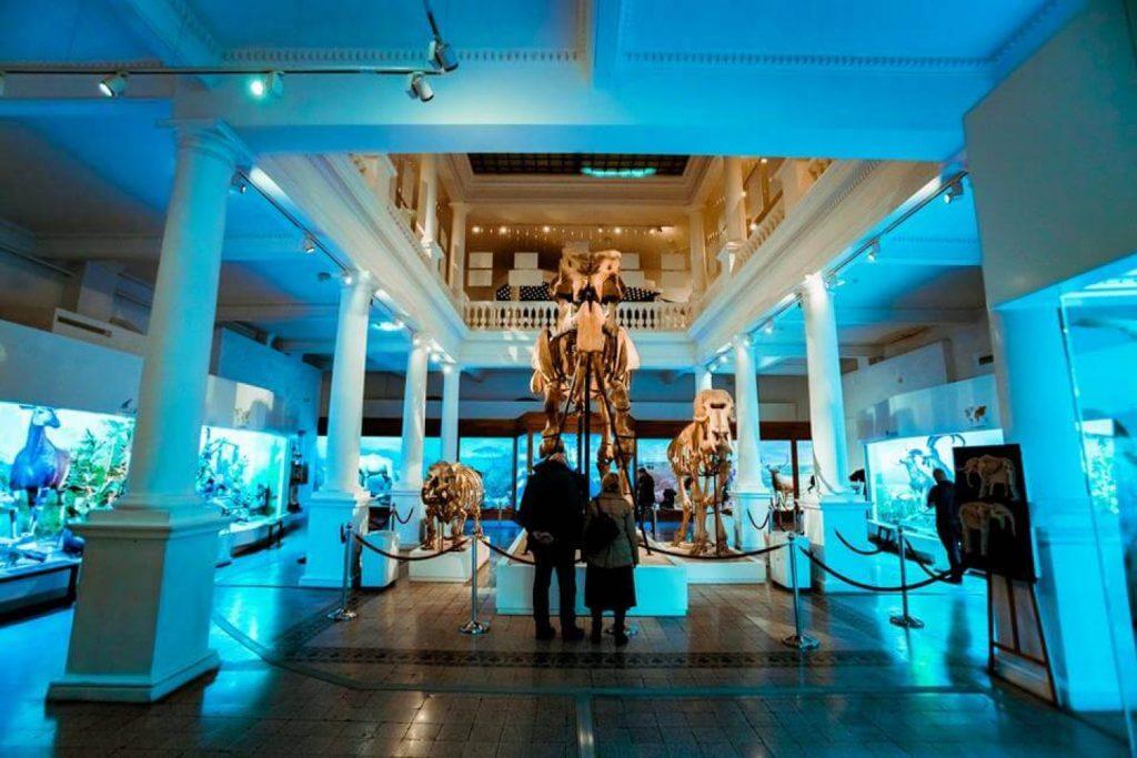 Cele mai interesante muzee ale Bucureștiului
