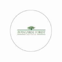 Avangarde Forest 6