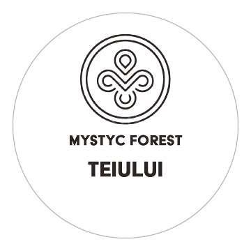 Mystyc Forest - Teiului